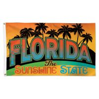 State / Florida Flag - Deluxe 3' X 5'