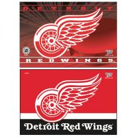 "Detroit Red Wings Rectangle Magnet, 2pack 2"" x 3"""