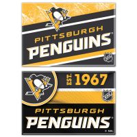 "Pittsburgh Penguins Rectangle Magnet, 2pack 2"" x 3"""
