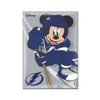 """Tampa Bay Lightning / Disney DISNEY Metal Magnet 2.5"""" x 3.5"""""""