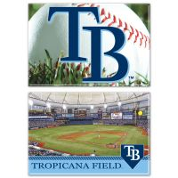 """Tampa Bay Rays Rectangle Magnet, 2pack 2"""" x 3"""""""