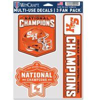 "FCS DIV 1 FOOTBALL CHAMPION Multi Use - 3 Fan Pack 5.5"" x 7.75"""