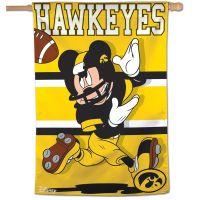"""Iowa Hawkeyes / Disney Vertical Flag 28"""" x 40"""""""