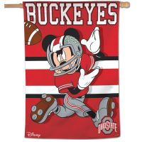 "Ohio State Buckeyes / Disney Vertical Flag 28"" x 40"""